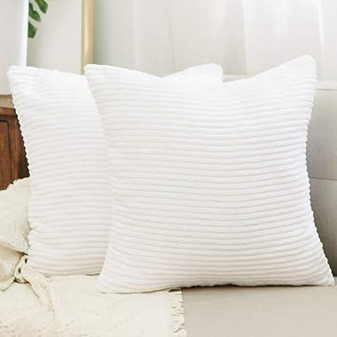 NATUS WEAVER 2 Pack Striped Corduroy Textured Velvet European Sham Throw Pillowcase for Bed, 24 x 24 inch (60 cm), White