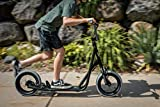 Mongoose Trace Youth/Adult Kick Scooter Folding and Non-Folding Design, Regular, Lighted, and Air Filled Wheels, Multiple Colors, Black