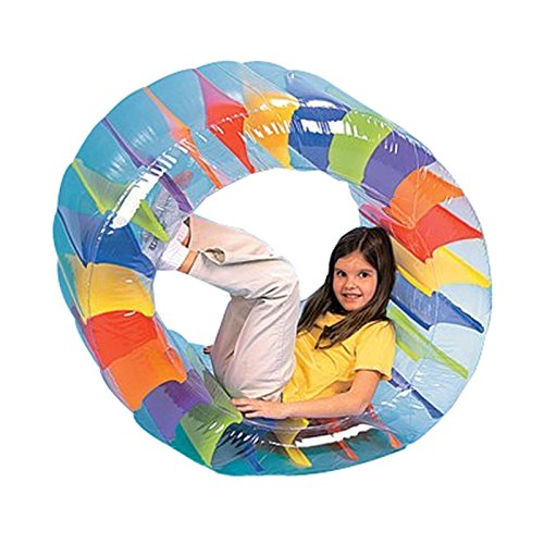 Inflatable Fun Roller - 2