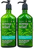 Bath & Body Works Eucalyptus Spearmint 6.5 oz Aromatherapy Lotion - 2 PACK