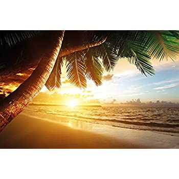 Sandy Beach At Sunset Wall Decoration Paradise Palm Trees Ocean Mural