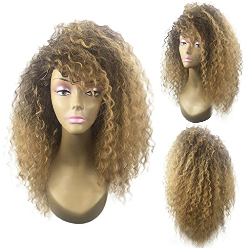 Yeefant Afro American Blonde Kinky Curly Synthetic Natural Looking Hairstyle Head Colorful Cosplay Daily Party Costume Wig for Women,24 Inches ()