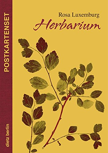 Herbarium Postkartenset: 10 Motive aus Rosa Luxemburgs Herbarium