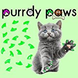 40-Pack Soft Nail Caps For Cat Claws NEON GREEN KITTEN Purrdy Paws