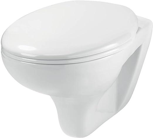 Wirquin 55720060 One Box Pack de – Estructura WC suspendida completo: Amazon.es: Bricolaje y herramientas