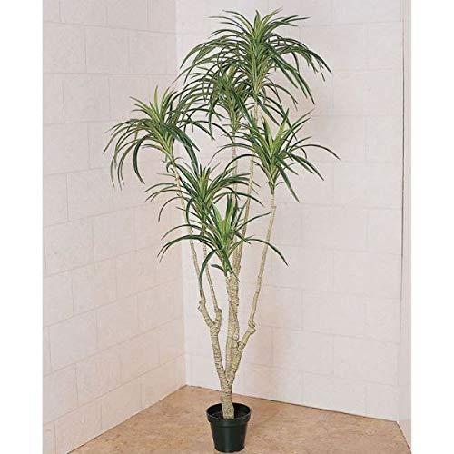 人工観葉植物 ユッカプラント×6 高さ135cm fg11544 (代引き不可) インテリアグリーン 造花 B07SXF2NS6