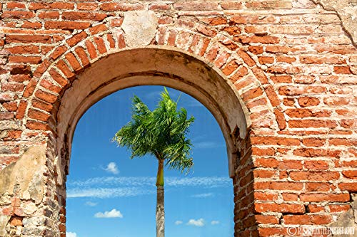 Palm Tree Print, Brick Archway, Blue Sky, Puerto Rico, Beach Decor, Caribbean Decor, Beach Cottage, Living Room Art, Bathroom Decor, Sizes Available from 5x7 to 20x30.