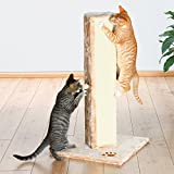 Trixie Pet Products Soria Scratching Post – Brown Review