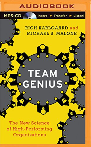 Team Genius: The New Science of High-Performing Organizations by Brilliance Audio