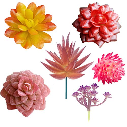 Aisamco 6 Pcs Artificial Succulents Assorted Faux Succulent in Different Red Fake Hanging Succulents Textured Faux Succulent for Plants Wall Decoration DIY Materials Wedding Centerpieces