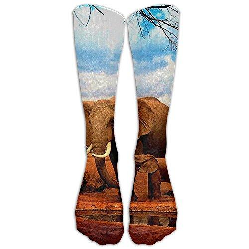 Happy Elephant Family Unisex Sport Long Socks Stockings Crazy Pattern Cotton Socks For Men Women (Stockimgs Christmas)