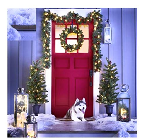 Outdoor Lighted Porch Trees in US - 9