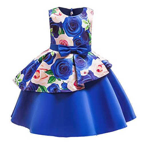 (Lovygaga Popular Kids Baby Girls Lovely Floral Print Bowknot Pleated Gown Princess Dress Sweet Birthday Party Dress Blue)