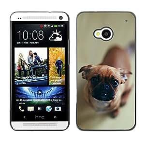 YOYO Slim PC / Aluminium Case Cover Armor Shell Portection //Cute Curious Dog //HTC One M7