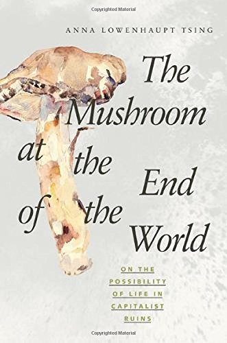 The Mushroom at the End of the World: On the Possibility of Life in Capitalist Ruins (Best Gardens In Kyoto)