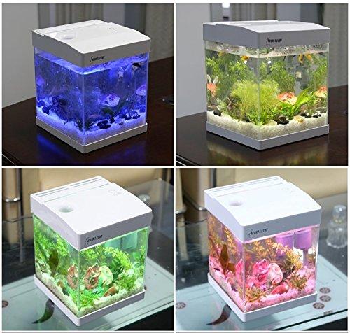 Acuario mini de cristal de 9,5L de control táctil con 6 tipos de luz LED incorporada, bomba, filtro y material filtrante incluidos: Amazon.es: Productos ...