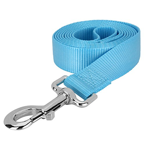 Blue Dog Flexible Leash - 1