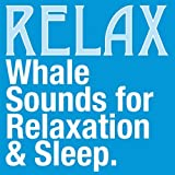 Relaxation: Whale Sounds (60 Minutes)