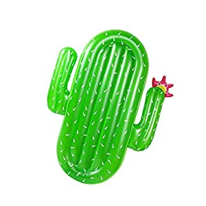 Sunba Youth Pool Float, Inflatable Pool Floats for Adults, Swimming Pool Raft (Cactus)