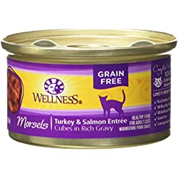 Wellness Complete Health Natural Grain Free Wet Canned Cat Food, Morsels Turkey & Salmon Entrée, 3-Ounce Can (Pack of 24)