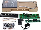 Moog Etherwave Theremin Plus Kit