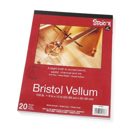 Darice 9-Inch-by-12-Inch Bristol Vellum, (Pastel Vellum Papers)