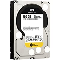 WD  250 GB WD RE SATA III 7200 RPM 64 MB Cache Bulk/OEM Enterprise Hard Drive WD2503ABYZ