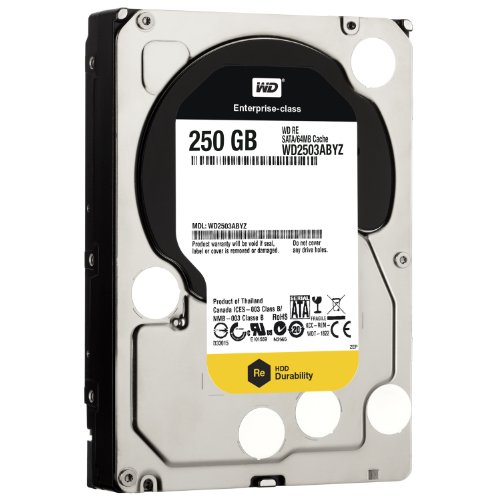 WD  250 GB WD RE SATA III 7200 RPM 64 MB Cache Bulk/OEM Enterprise Hard Drive WD2503ABYZ by Western Digital