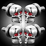 DLLL 4 x 6mm Custom Chrome Aluminum 3D Design Skull Red Eye License Plate LIC Tag Frame Bolts Set Universal Fit Motorcycle ATV Trailer