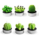 Cactus Tealight Candles Handmade Delicate Succulent Tea Light Candle Holder for for Birthday Party Wedding Spa Home Decoration-6 Pcs 6 Styles in Pack