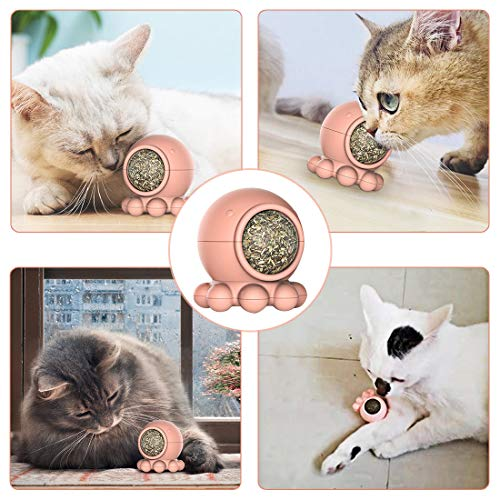Idepet Catnip Toy for Cat, Catnip Ball Edible Kitty Toy Interactive with Octopus Shape Design Improve Appetite and Digest