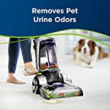 Bissell Professional Pet Urine Eliminator + Oxy