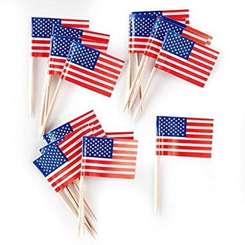 Patriotic Food - Creative Converting American Flag Food Picks (2-Pack)