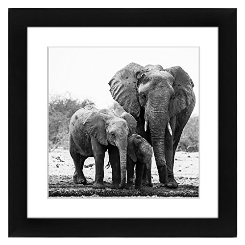 51dpQzjjTDL - Americanflat Black Picture Frame Sized 11x11 - Matted to Fit Pictures 8x8 Inches - Hanging Hardware Included