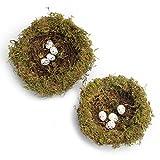 MomokoPeng Set of 2 Spring Bird Nests With Eggs,Twig Bird Nest Decorative Ornament With Clip(Green Bird's Nest)