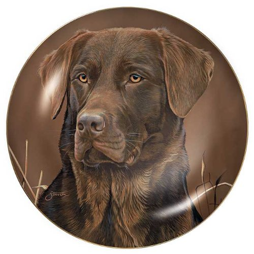 Lab Dog Plate - Sporting Dogs - Chocolate Lab Collector Plate