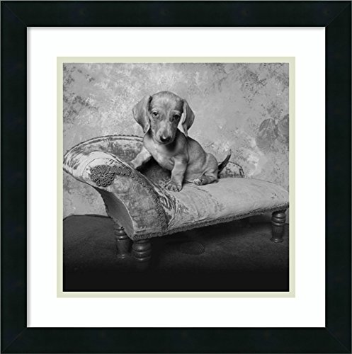 Framed Art Print 'Snow White' by Ginger Delater White Ginger Matted Print