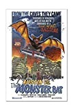 Austin, Texas - Austin vs The Monster Bat - B Movie Poster (12x18 Acrylic Wall Sign)