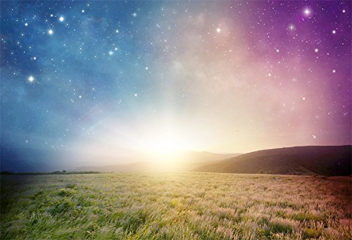 Yeele 7x5ft Beautiful Natural Scenery Backdrop Sunset Countryside Wild Grass Starry Sky Photo Background Wallpaper Harvest Festival Party Photo Studio Prop