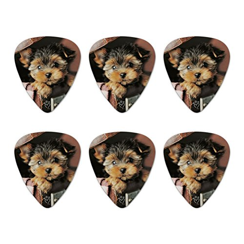Yorkie Yorkshire Terrier Puppy Dog in Briefcase Trunk Suitcase Novelty Guitar Picks Medium Gauge - Set of 6 ()