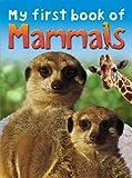 My First Book of Mammals, Ticktock Media, Ltd. Staff, 1846968143