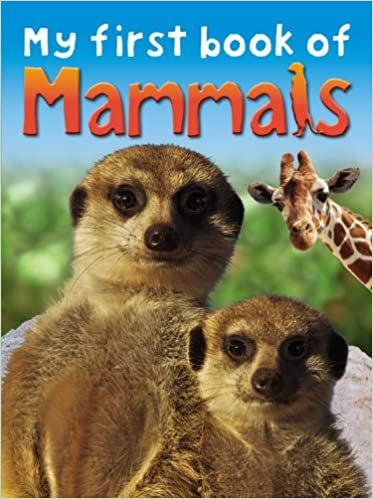 My First Book Of Mammals Ticktock 9781846968143 Amazon Books