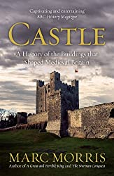 Castle: A History of the Buildings That Shaped Medieval Britain