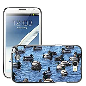 Super Stella Slim PC Hard Case Cover Skin Armor Shell Protection // M00105459 Mallards Ducks Birds Water Swimming // Samsung Galaxy Note 2 II N7100