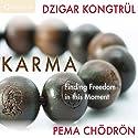Karma: Finding Freedom in This Moment Rede von Pema Chödrön, Dzigar Kongtrul Rinpoche Gesprochen von: Pema Chödrön, Dzigar Kongtrul Rinpoche