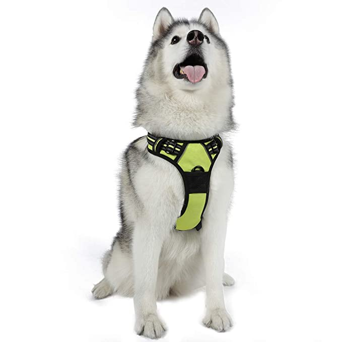SRabbitgoo Adjustable Reflective Dog Harness – The Best Leash for Husky