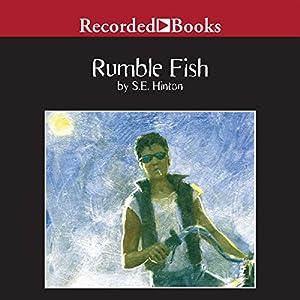 Rumble Fish Audiobook