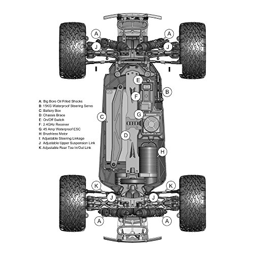 Blackout XTE Pro 1/10 Scale Electric Monster Truck by Redcat Racing (Image #9)