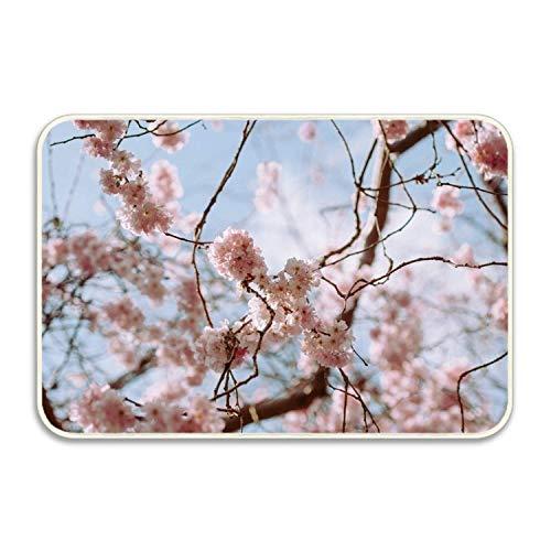 FnLiu Pompadour Flowers Indoor/Outdoor Door mat Bathroom Kitchen Rug Welcome Doormat