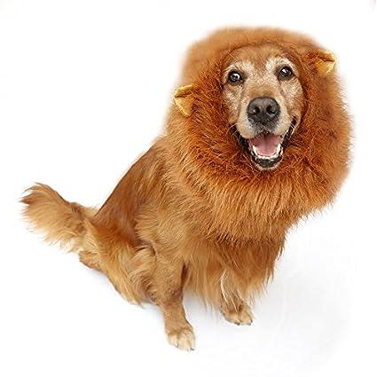 PETCUTE Perro Disfraz León Melena Peluca para el Perrito del Gato del Animal doméstico Víspera de